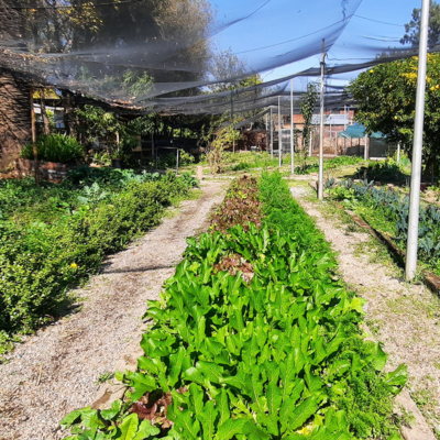 SA-PERMACULTURE_0042_20200513_123237